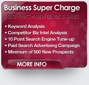 Search engine optimization and paid search internet advertising